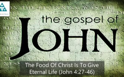 #24: The Food of Christ Is to Give Eternal Life[Sermon]