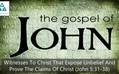 #29: Witnesses to Christ that Expose Unbelief and Prove The Claims of Christ[Sermon]