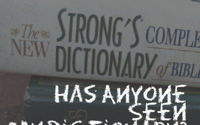 Anyone Seen My Dictionary?