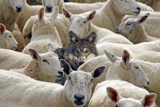 Nathan Finn – How to Spot a False Teacher