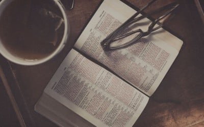 David Mathis – The Red Herring of Bible Application