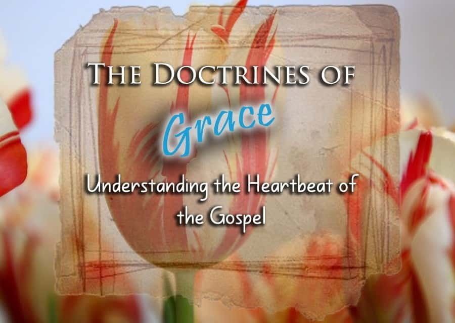 The Doctrines of Grace: Understanding the Heartbeat of the Gospel 1