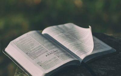 How Do I Feed On God's Word?