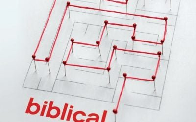 Biblical Counseling Basics by Jeremy Lelek