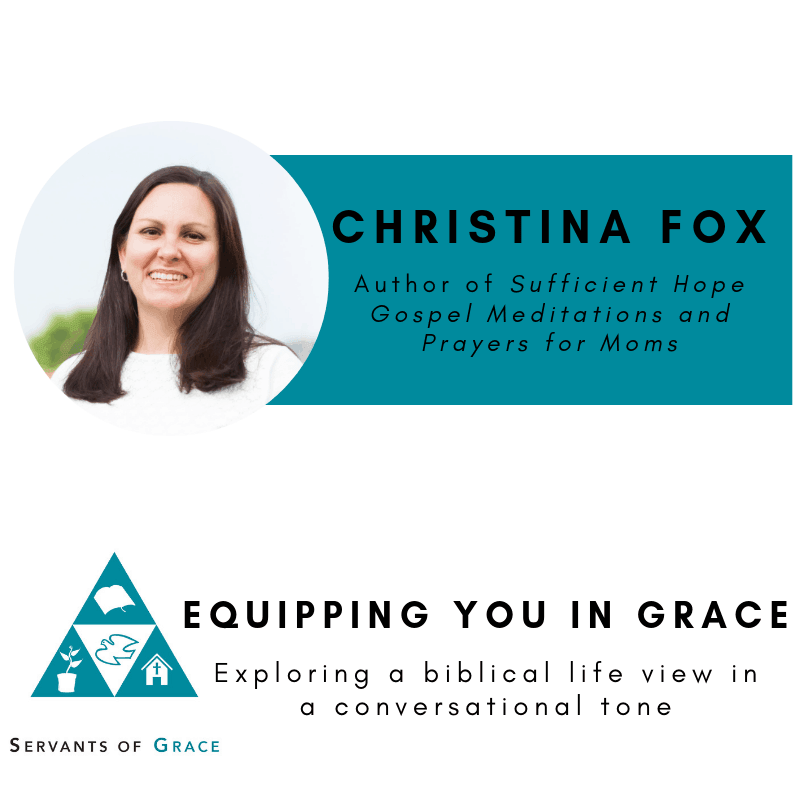 Christina Fox- Sufficient Hope Gospel Meditations and Prayers for Moms