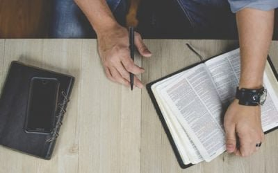 The Importance of Jesus the Divine Word
