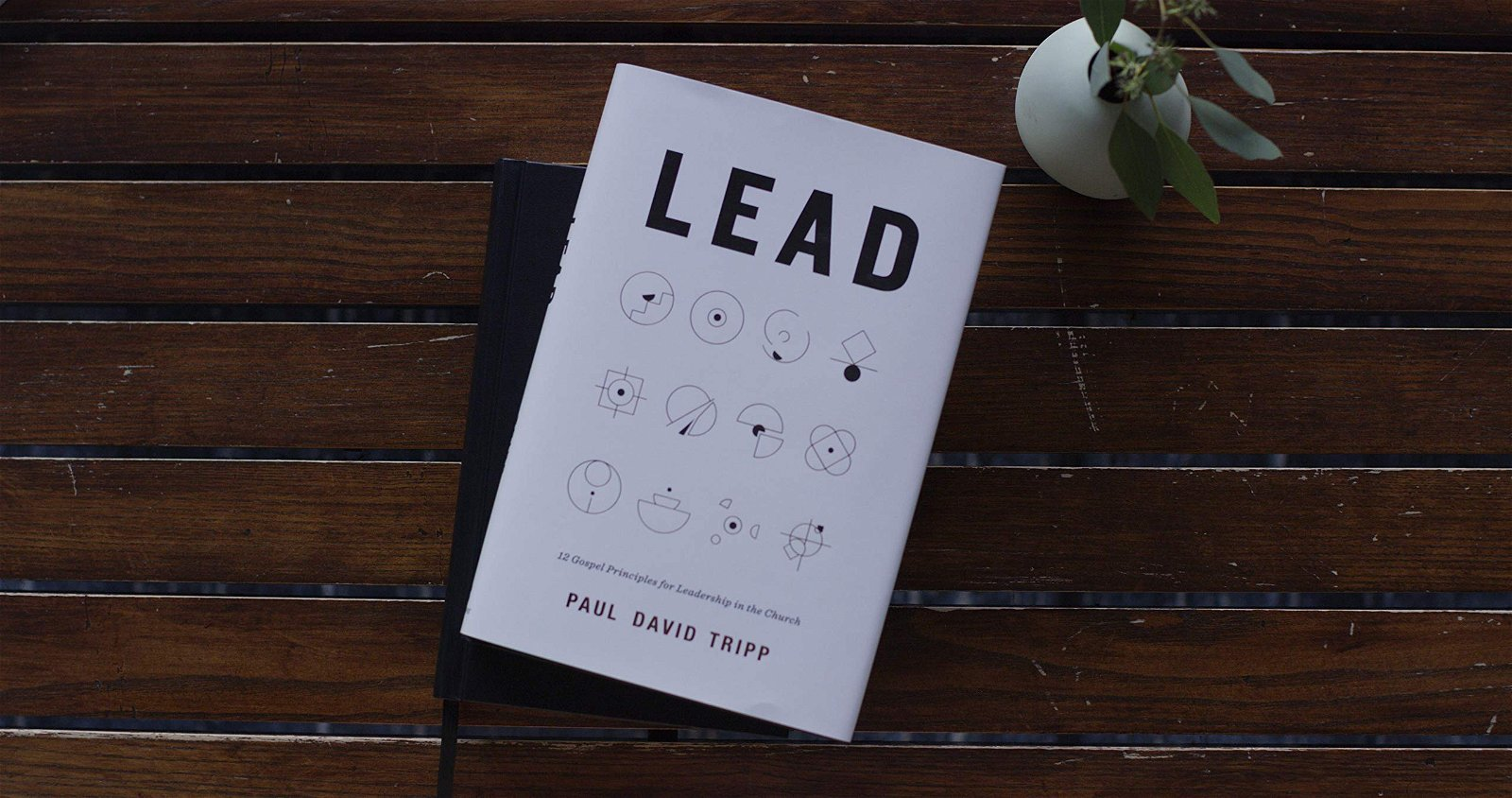 Paul David Tripp– Lead: 12 Gospel Principles for Leadership in the Church