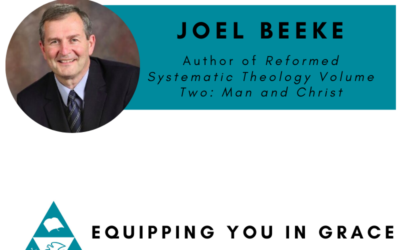 Joel Beeke- Reformed Systematic Theology: Volume 2: Man and Christ