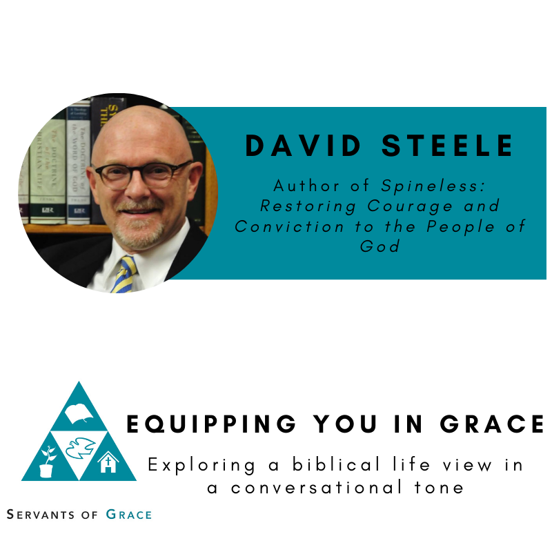David Steele– Spineless: Restoring Courage and Conviction to the People of God