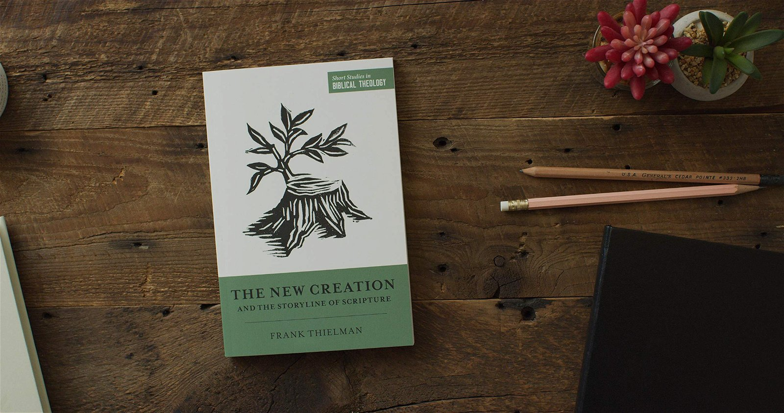 The New Creation and the Storyline of Scripture – Frank Thielman (2021)